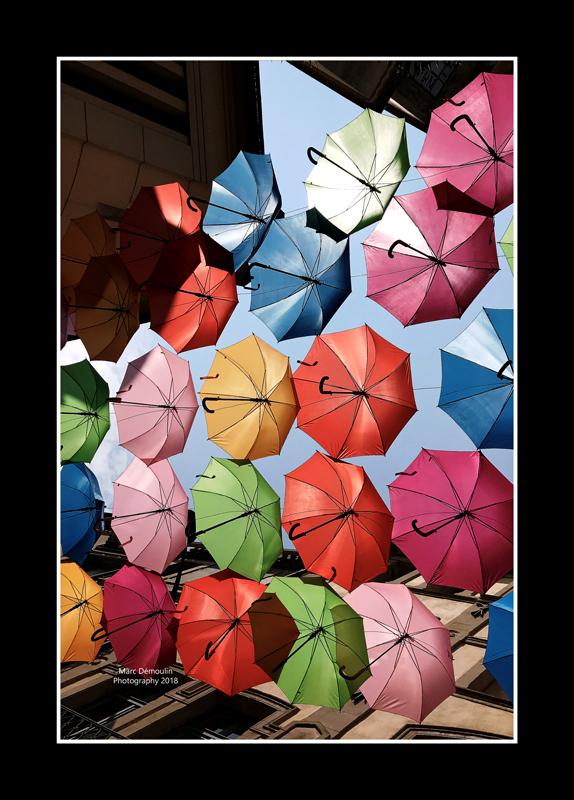 Umbrella street 5