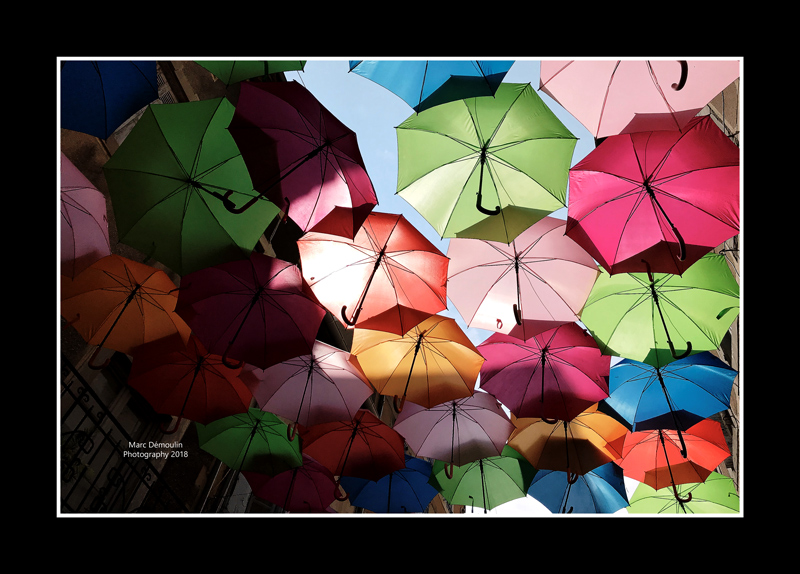 Umbrella street 8