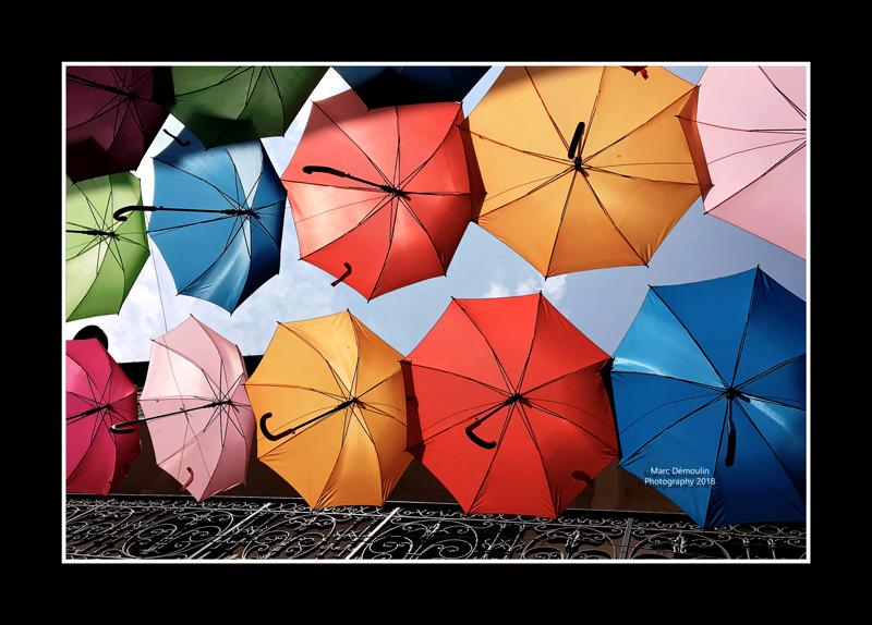 Umbrella street 10