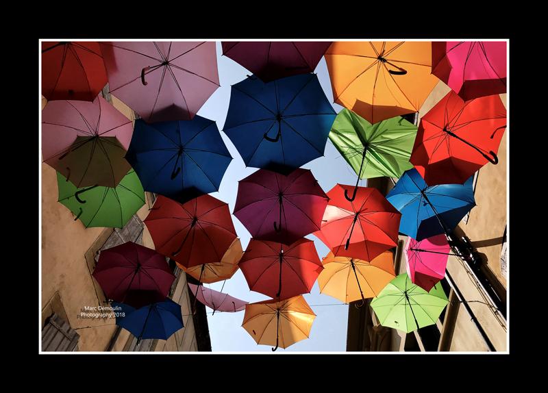 Umbrella street 15