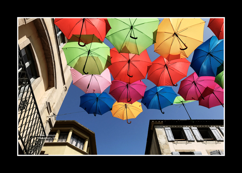 Umbrella street 16
