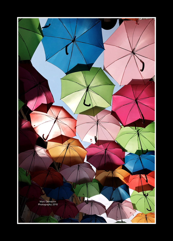 Umbrella street 20