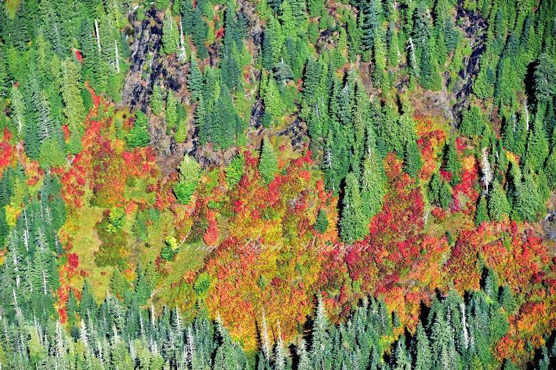 Fall foliage and colors near Three Fingers 050