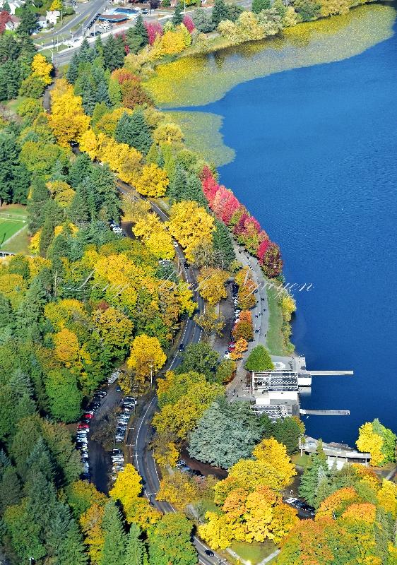 Greenlake Way in the autumn Seattle Washington 442