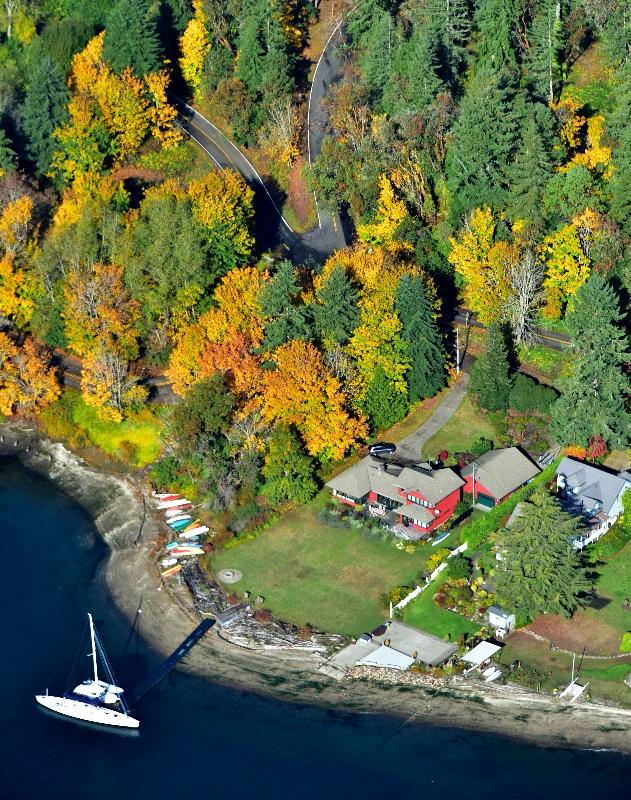 Fall colors on Bainbridge Island Washington 205