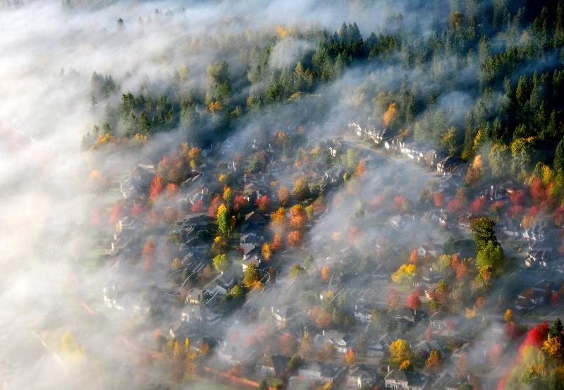 Autumn colors by Fall City Washington 111