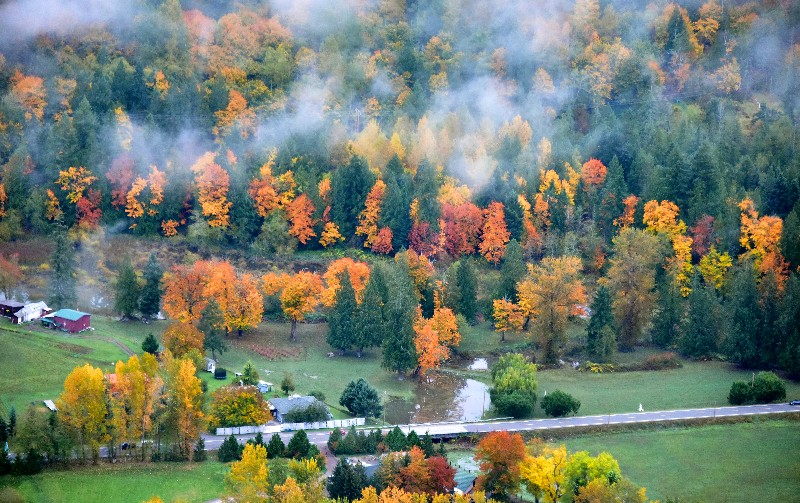 Fall Foliage in Snoqualmie River Valley by Fall City Washington 394