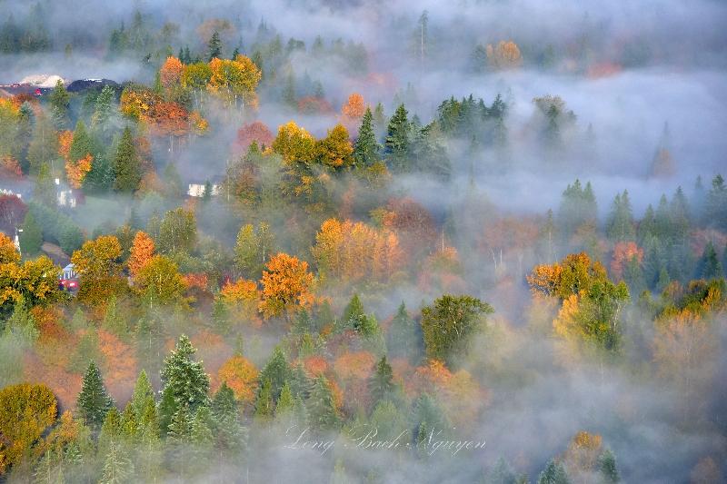 Autumn over Pacific Northwest 334