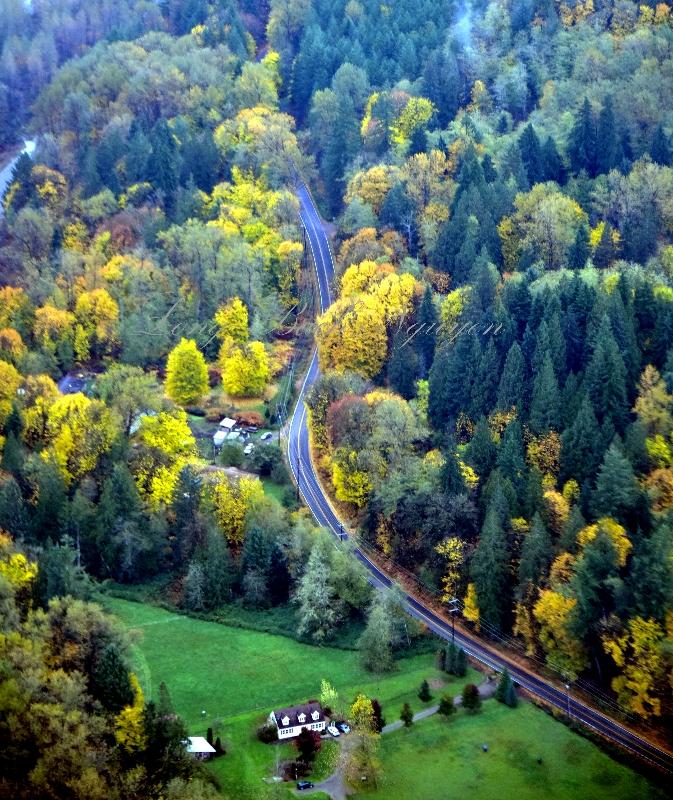 Ben Howard Road and Skykomish River by Sultan Washington 326