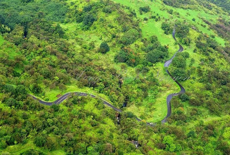 The Famous Hana Highway, Maui, Hawaii 167