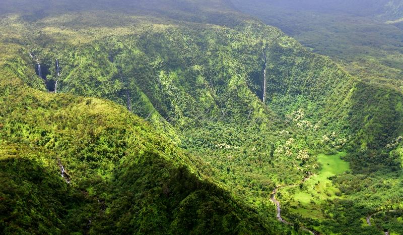 KeAnae Valley, Palauhulu Stream, Kano Stream, Hauoliwahine Gulch,  Waiokamilo Stream,  Hawaii 441