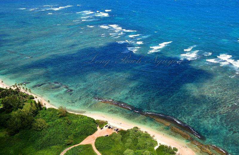 Papaʻula Poin twest of Spreckelsville Beach, Maui, Hawaii 299