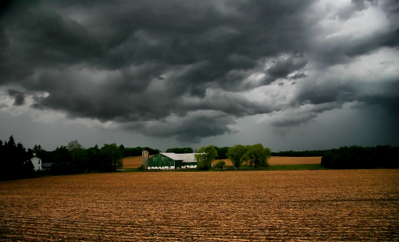 Storm 12.jpg