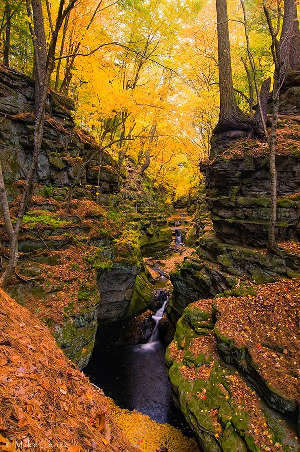 Fall in full swing