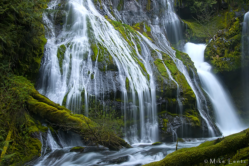 Panther Creek Falls (Gifford Pinchot National Forest, WA)