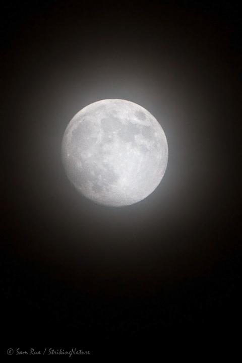 Veiled Moon