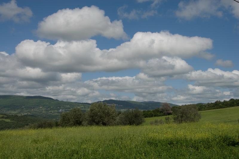 Monterotondo Mmo