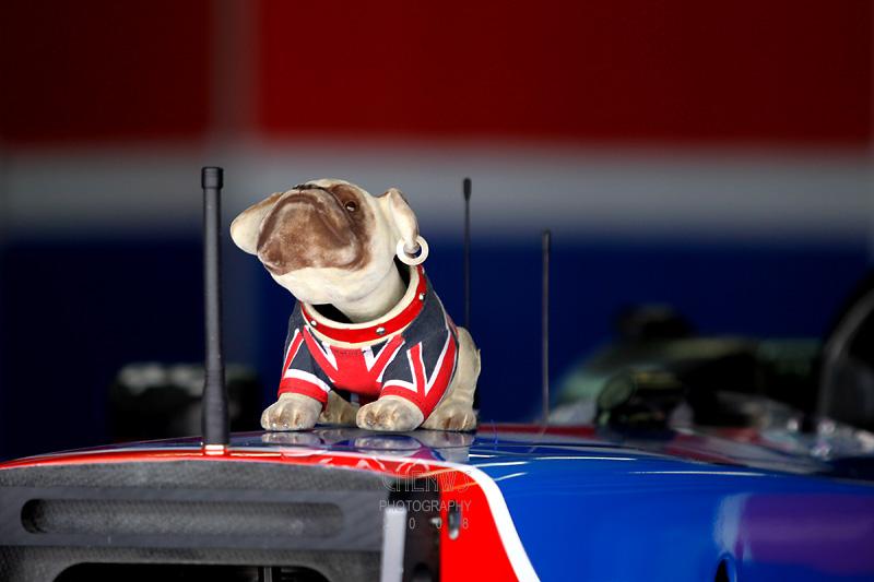 English mascot
