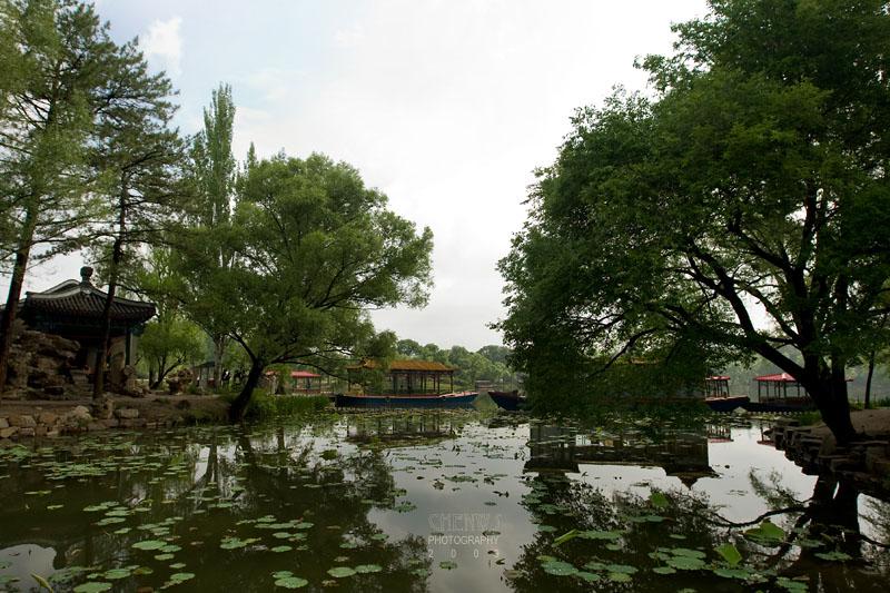 Palace lake and trees (CWS8759)