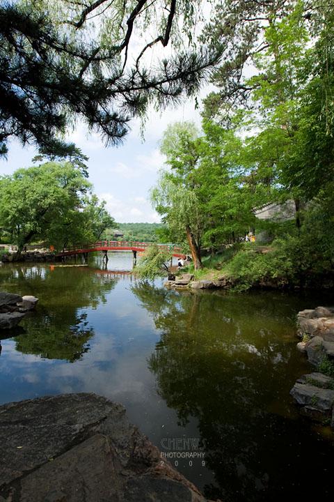 Hot spring pond (CWS8794)