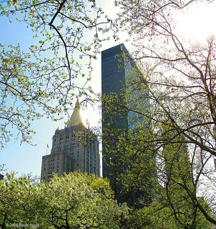 Manhattan:Man and Nature Challenge