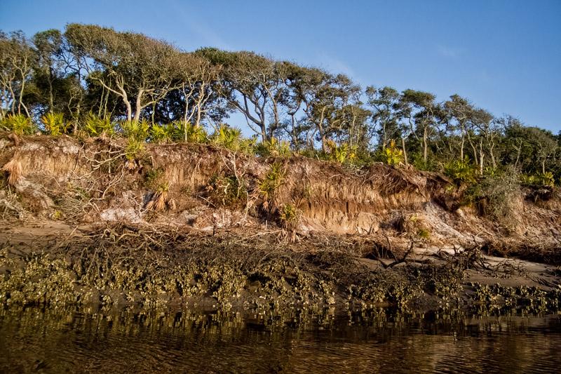 Big Talbot Island.jpg