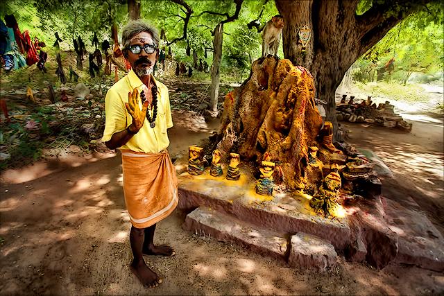 நல்ல பாம்பு வீடு  • Madurai