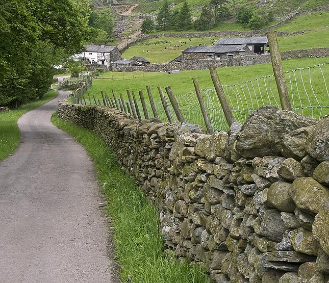 Path To Millbeck Farm