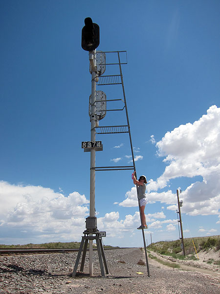 Madi checks the ladder