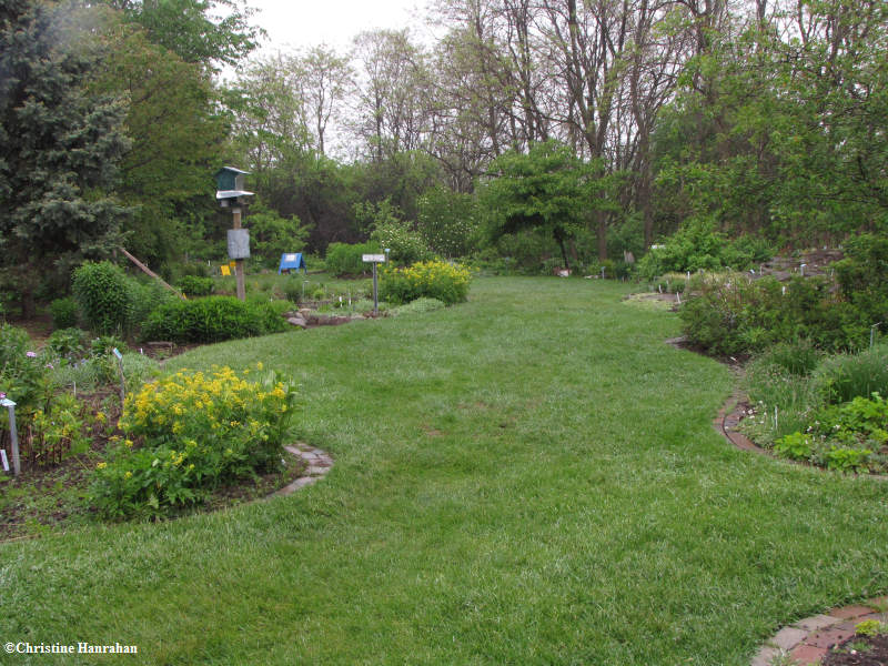 Backyard Garden in spring 2009