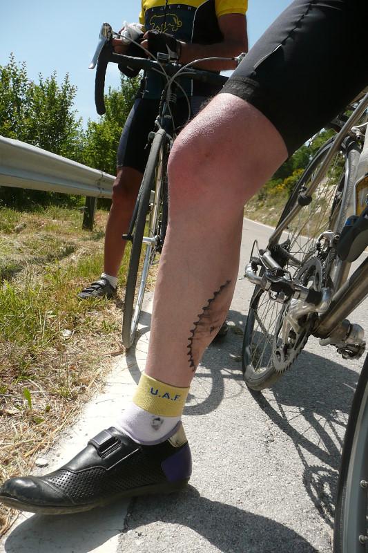 Belle jambe