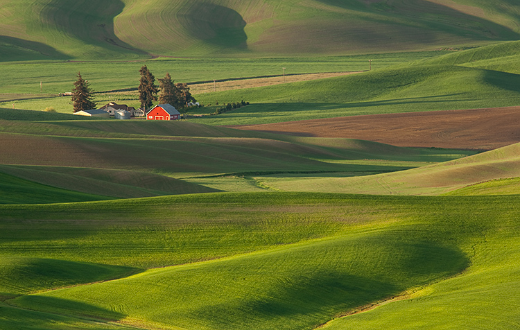 Red barn & field by Tim Clifton