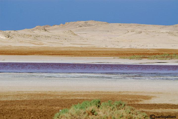 Ras Mohammed-il lago magico