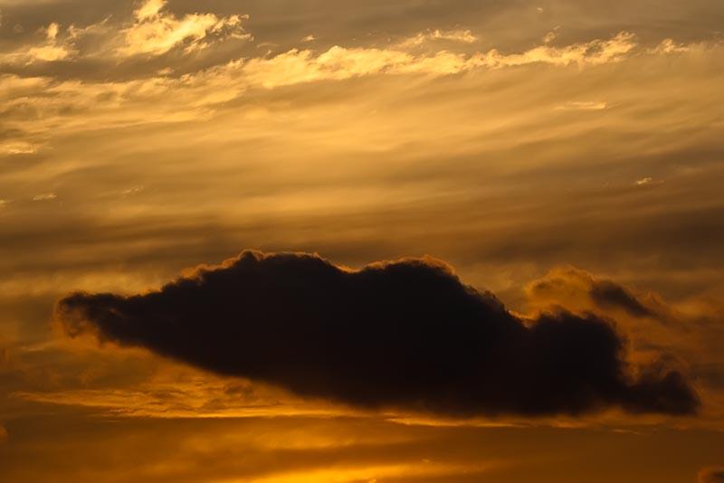 Every Cloud Has An Orange Lining
