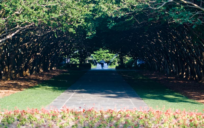 Path To The Fountain