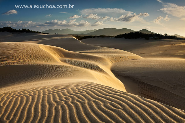 Cumbuco, Caucaia, Ceara, 3033, 18dez09.jpg