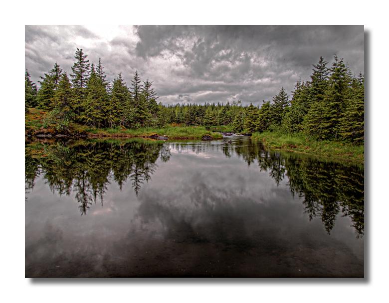 Mendenhall Pond
