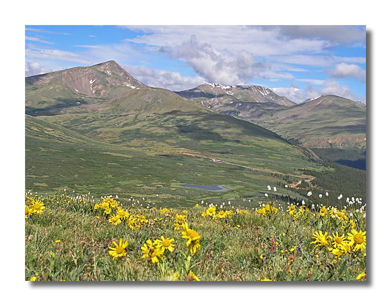 Above Guanella Pass