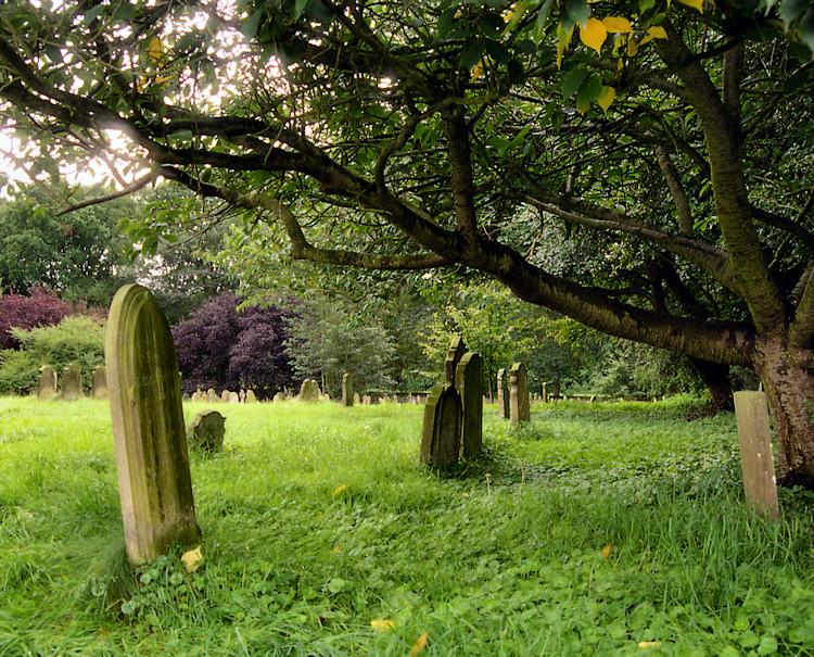 Graveyard Near Hickling Broad, Norfolkshire, England .jpg
