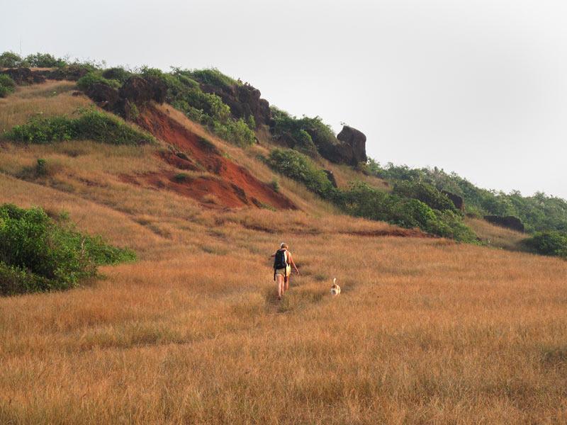 South Anjuna headland