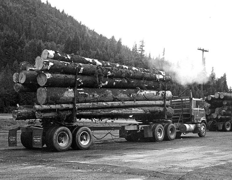 One of the many logtrucks