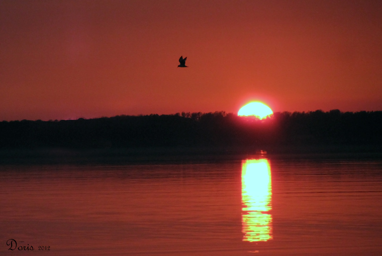 Coucher de soleil sur le lac Ontario - Sunset on Ontario Lake