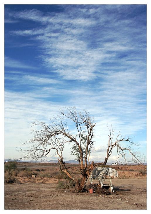 Shade from the Desert Heat
