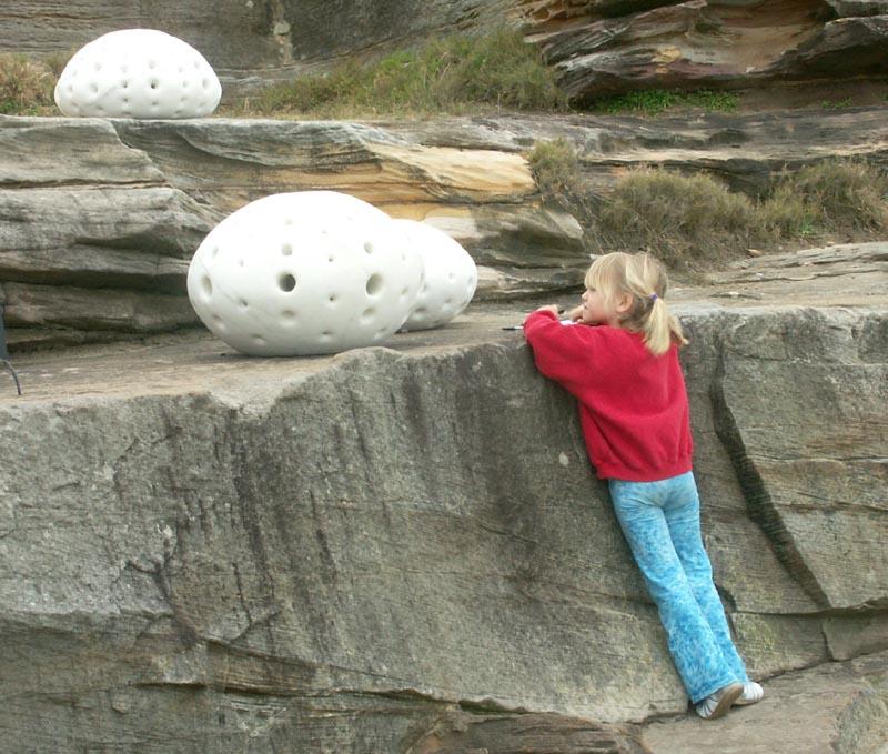 #70: Fossili marini - fossils of the sea