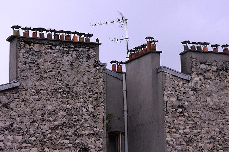 Habitant des cimes parisiennes