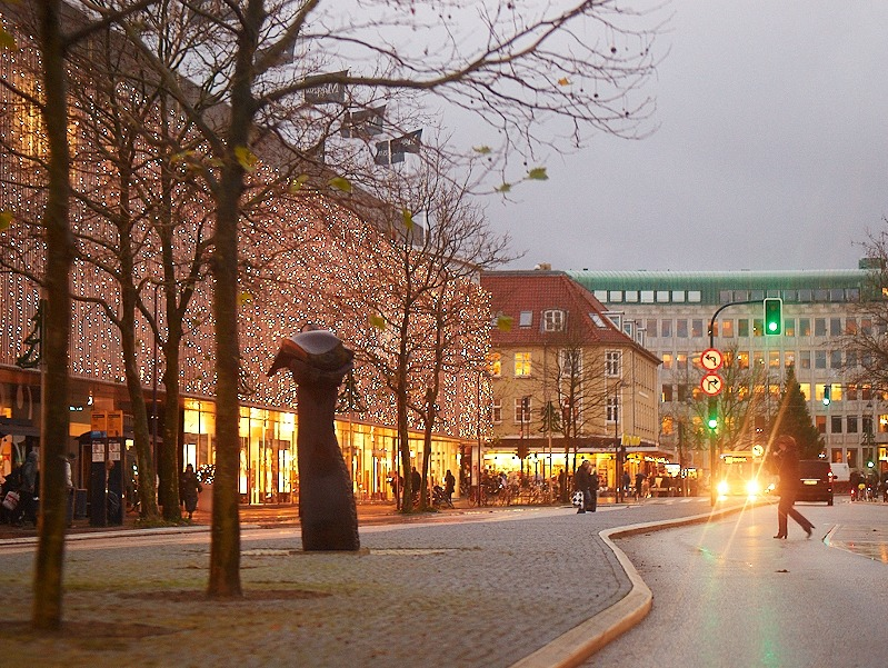 2008-11-19 Magasin in Lyngby