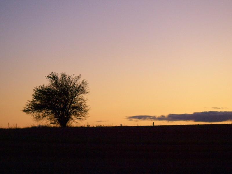 2009-10-19 Evening colours