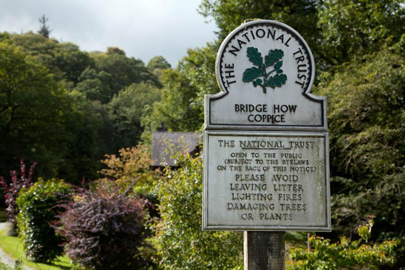 Bridge How Coppice