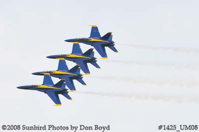 The Blue Angels at the 2008 Great Tennessee Air Show practice show at Smyrna aviation stock photo #1425