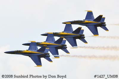 The Blue Angels at the 2008 Great Tennessee Air Show practice show at Smyrna aviation stock photo #1427